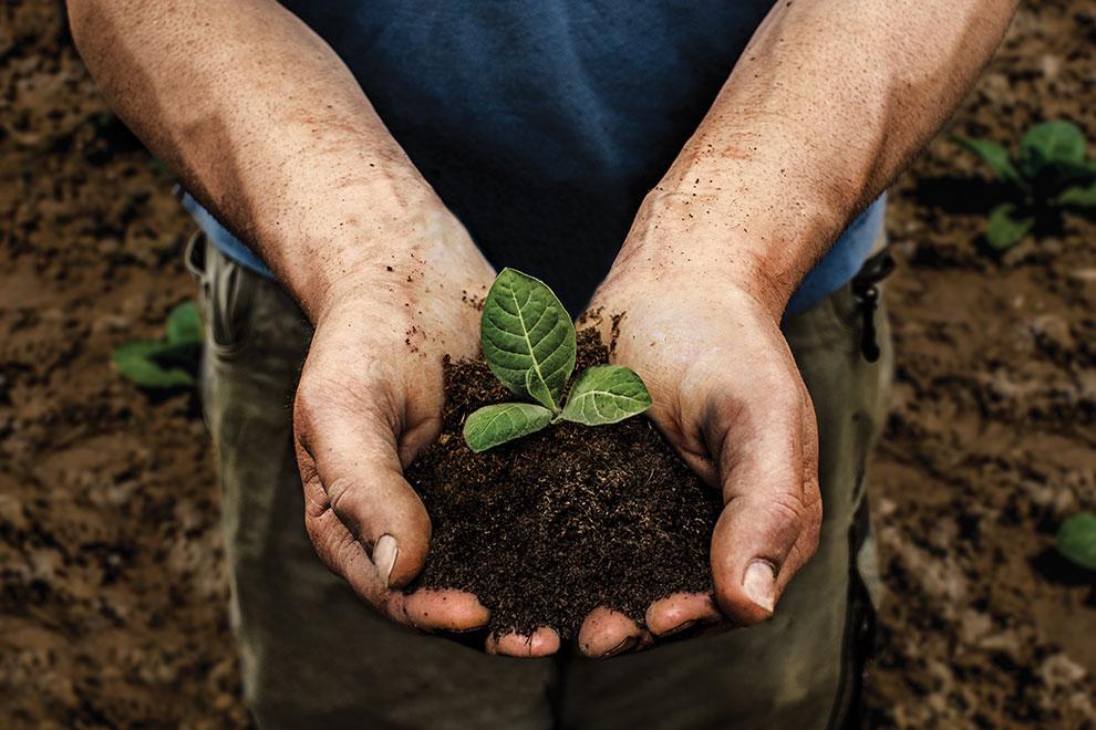 Advertising Photographer London Birmingham UK Farmer holding handful of soil